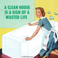 A_Clean_House_Re_52f21b11b9827