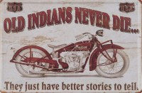 Old_Indians_Neve_54f6f2b9b071d
